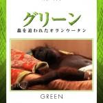 IVMS-2011 グリーン