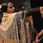 flamenco-594272_960_720